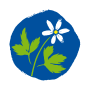 logo_krist
